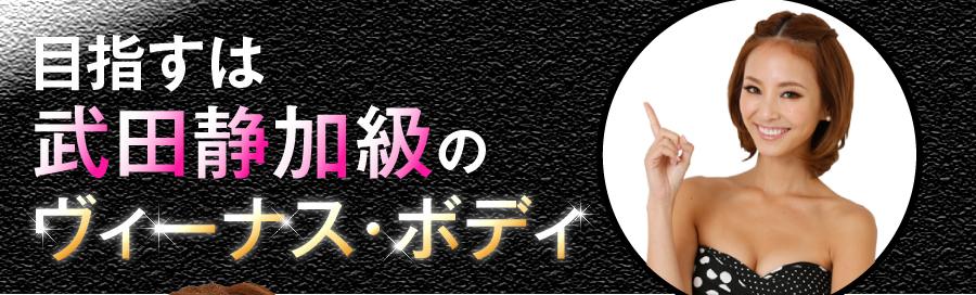 ヴィーナスボディは痩せるの?武田静加プロデュースのダイエットサプリ ヴィーナスボディ